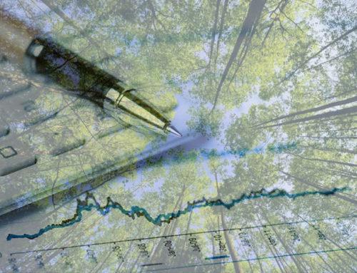 UP Magazine – Faudrait-il passer le vivant et la planète en comptabilité ?