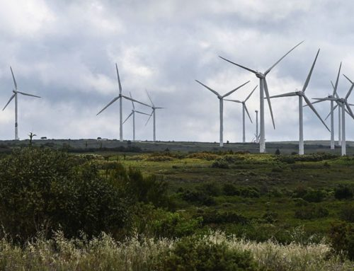 Les éoliennes envahissent la campagne des régionales et des départementales