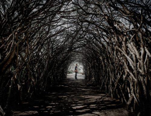 Blockchain : la marketplace de Winding Tree vise à désintermédier le tourisme